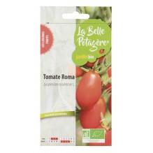 Tomate Roma 0,15g - Lycopersicon esculentum L.