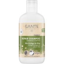 Shampooing de soin - ginkgo bio et olive - 200 ml