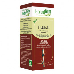 Tilleul Macérat concentré de bourgeons Bio 50 ml