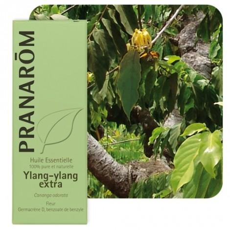 Huile essentielle d'Ylang-ylang - 5 ml