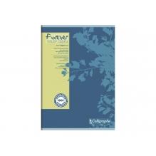 Cahier - A4 - Quadrillé bleu ou vert *