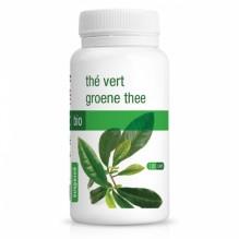Capsules de thé vert BIO