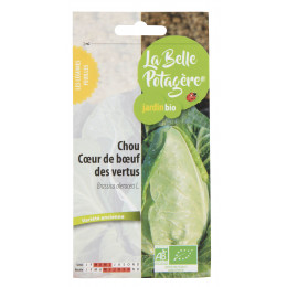 Chou coeur de boeuf des vertus 0,4g - Brassica oleracea L.