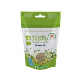 Graines à germer - Quinoa BIO