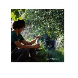 Gourde isotherme en inox - La gloup - 500 ml
