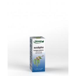 Huile essentielle Eucalyptus globulus - feuille Bio 10 ml
