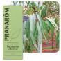 Citroeneucalyptus essentiële olië