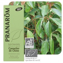 Chinese kaneelboom essentiële olië BIO - 10 ml