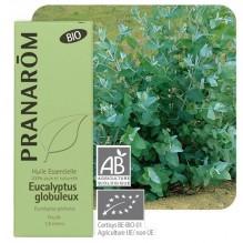Eucalyptus Globulus essentiële olië BIO