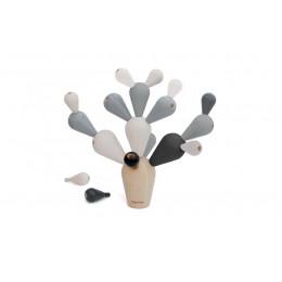 Balancerende cactus 'zwart-wit' - vanaf 3 jaar